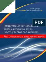 Interpretacion Jurisprudencial Desde La Optica de Los Jueces