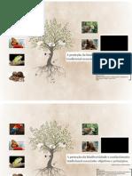 Biodiversidade apresentacao