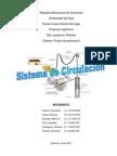 sistema de circulacion perforacion.pdf