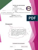 Concepto - Características - Tipos - Ventajas y Limitaciones de Un Presupuesto. Diana (2)