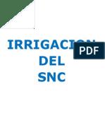 IRRIGACION SNC.pdf