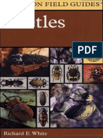 A Field Guide to the Beetles