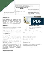 Informe de Laboratorio -De Físico -Quimica