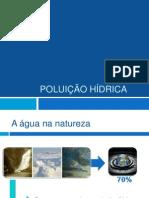 Poluição Das Águas PDF