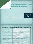 Poluição Do Ar PDF
