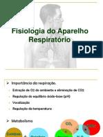 Sistem Respiratório