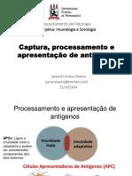 Aula Processamento e Apresentação de Antígenos