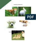 Animales Domestico2
