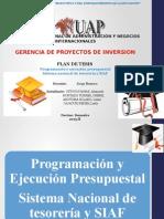 Programacion y Ejecucion Presupuestaria