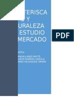 Estudio Del Mercado TERMINADO
