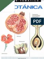 Atlas de Botanica