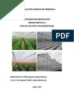 Propuesta Horticola Pedro Ibarra 2.012.