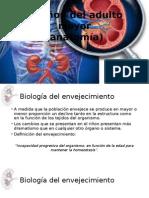 Nefro - Anatomía Renal Del Adulto Mayor
