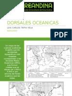 DORSALES OCEANICAS
