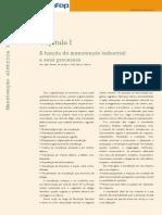 Ed48 Fasc Manutencao Industrial Cap1