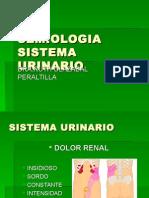 Semiología Del Sistema Urinario
