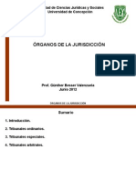 Organos de La Jurisdiccion