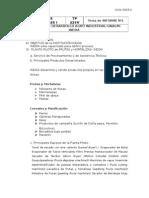 Tema Informe INDDA