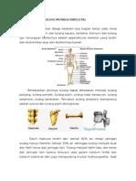 Makalah Osteomielitis