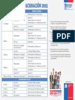 Calendario Vacunas MINSAL Chile 2015