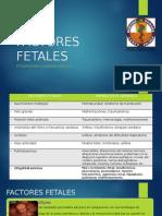 FACTORES FETALES