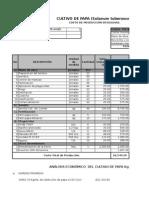 Costo de Producción de Arveja China
