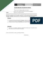 Modelo de Informe Final de Daip 2010