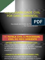 Responsabilidade Civil Por Dano Ambiental 30 Mai 2014