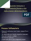 APUNTE Respuesta Inmune e Inflamatoria Frente a Las Infecciones Detomaxilares 2015