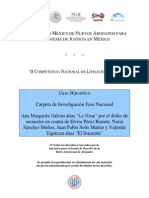 Carpeta de Investigación- Caso Ana Margarita Galván Alias La Nena - Secuestro v3.