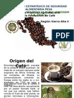 Bpa en La Producción de Café