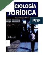 Sociologia Juridica Rafael Marquez Piñero