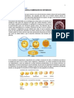 Desarrollo Embrionario de Vertebrados