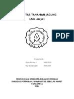 (beberapa) VARIETAS TANAMAN JAGUNG