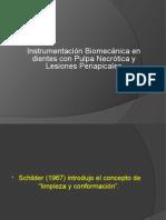Ibm Pulpa Necrótica