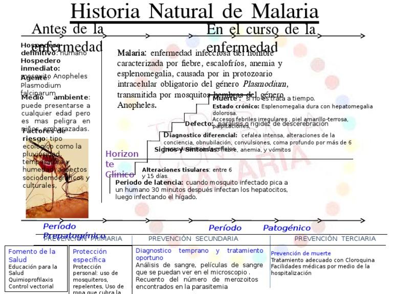 Historia natural de la malaria