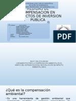 Medidas de Compensacion en Proyectos de Inversion Publica