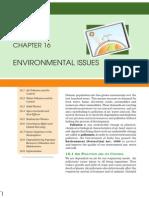 environmental issue.pdf