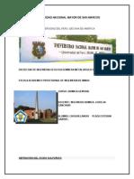 Obtencion de Acidos - CHUQUILLANQUI PLAZA, Esteban Gabriel