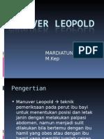 MANUVER LEOPOLD (praktik).ppt