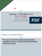 Entomology Excretion system of insect