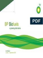 BP's Biofuel strategy