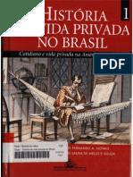 História Da Vida Privada No Brasil 01- Txt Família Leiza Mezan Algranti