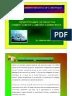 NegociosAmbientalesLambayeque_Simons.pdf