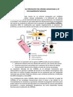 MicroRNAs y Su Interacción Las Células Cancerosas y El Microambiente Tumoral