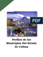 Perfil Municipal a Nivel Estado-1ª Parte 10-03-08