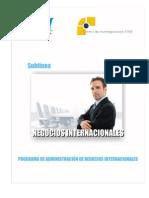 sublineas_negociosinternacionales.pdf