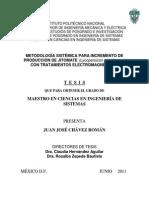 Tesis completa Final.pdf