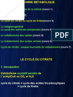 Cycle Du Citrate