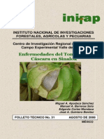 Enfermedades Del Tomate de Cascara en Sinaloa